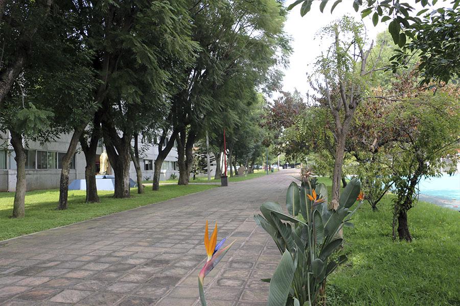 jardineras-5